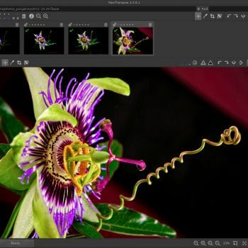 Image Processing Outsourcing
